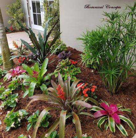 VeroBeach_BotanicalConcepts_landscapes_exotic