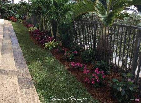 VeroBeach_BotanicalConcepts_landscapes_tropical_border