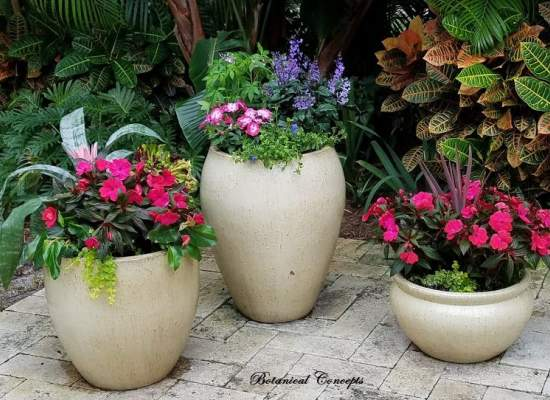 VeroBeach_BotanicalConcepts_Container_Garden_grouping_for_shade