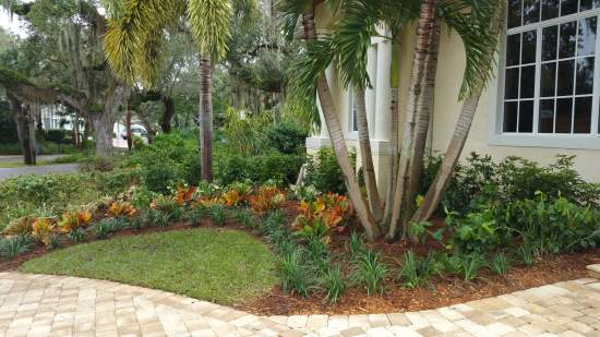 VeroBeach_BotanicalConcepts_landscapes_colorful_FrontFoundation