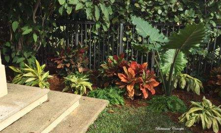 VeroBeach_BotanicalConcepts_landscapes_corner_interest